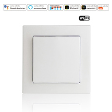 Wintop AI Wi-Fi Smart Light Wall Switch white 55F