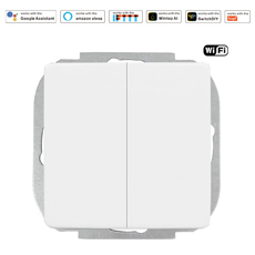 Wintop AI Wi-Fi Smart Light Wall Double Switch 63L
